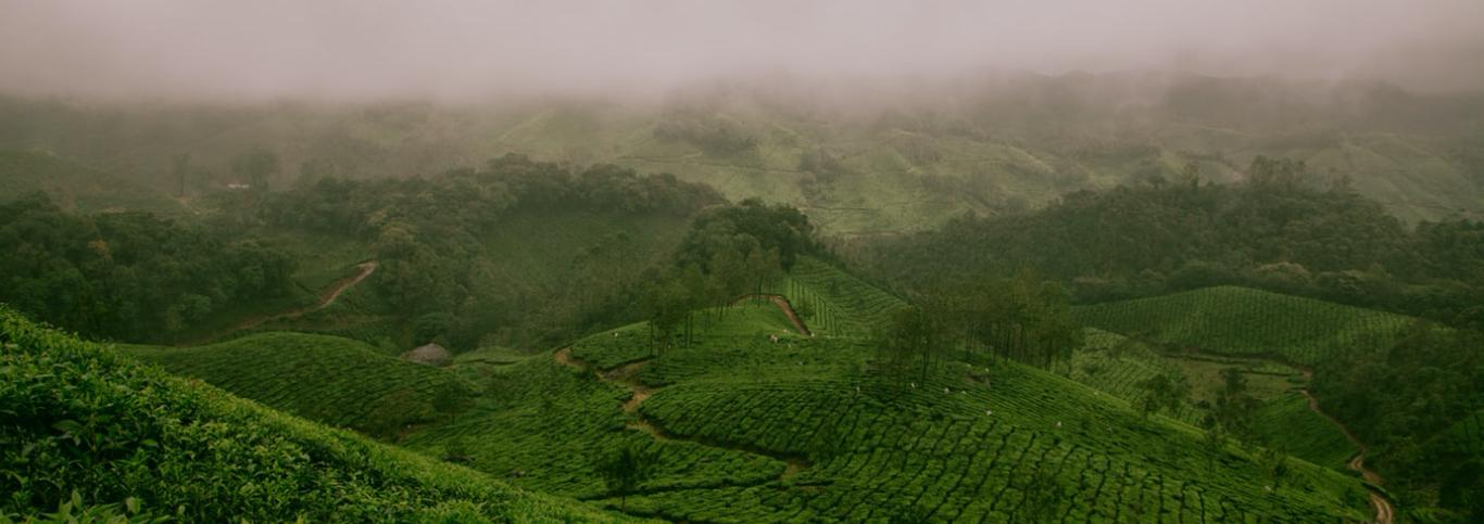 An Indian landscape
