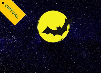Virtual Team Gotham